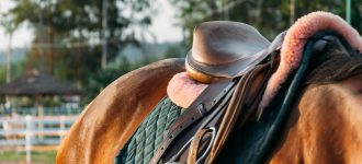 Durability of equestrian equipment